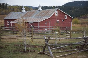 Tincup Dairy Barn