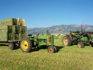 John Deere 3020 and A loading Alfalfa