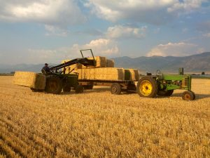 John Deere 3020 and Model A loading Straw